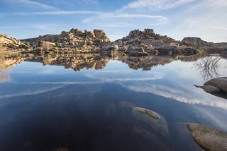 Lake at Barker Dam; 3/8/17 | by Joshua Tree National Park