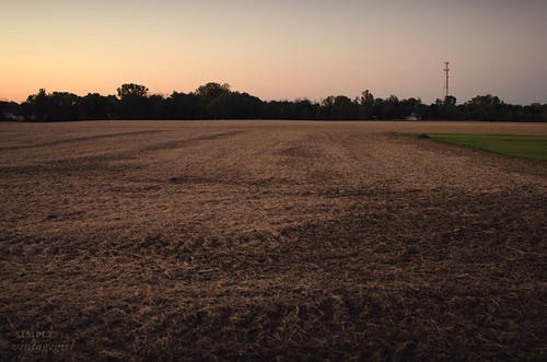 Indiana Landscape - Harvested Field | by Simply Vintagegirl
