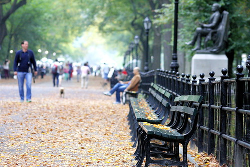 Central Park Benches | by Phil Roeder
