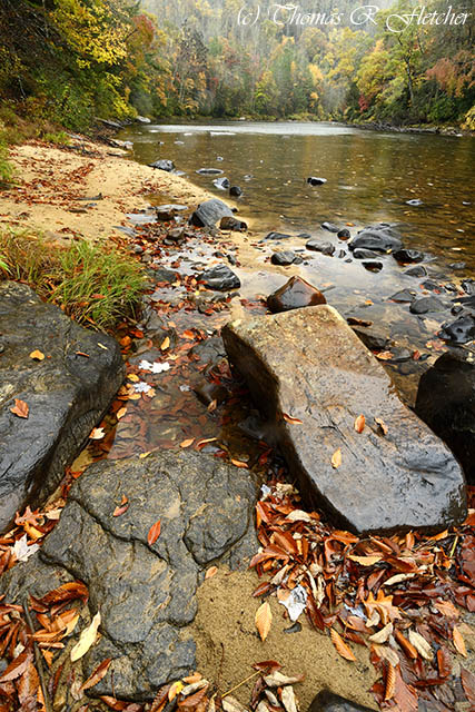 Autumn Color Gauley River