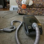 Duck with vaccuum
