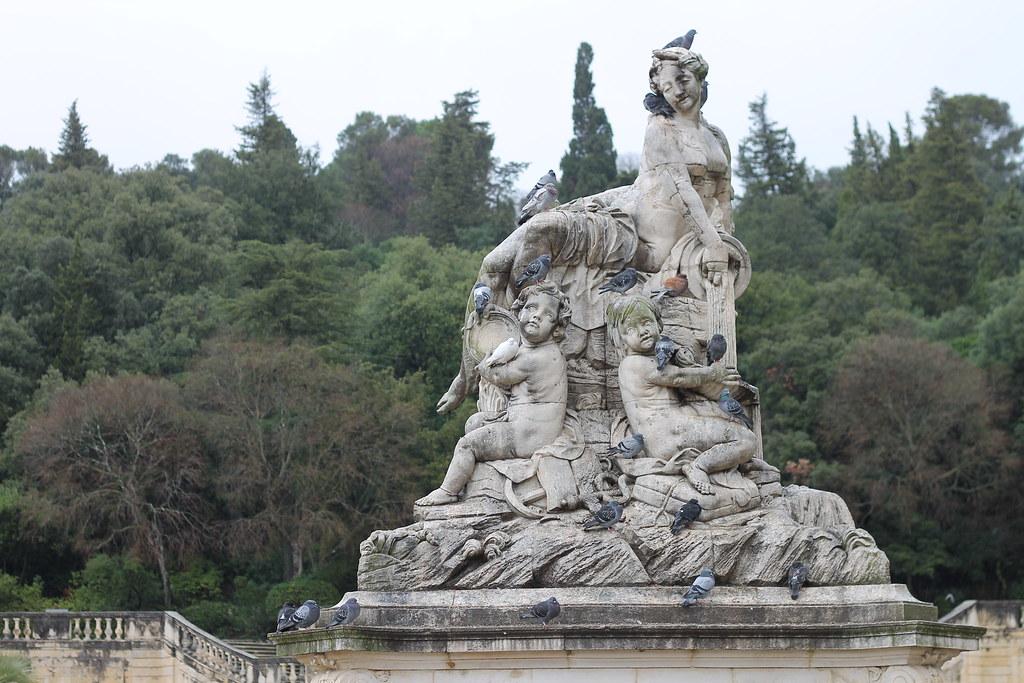 Pigeons under the rains, Jardins de la Fontaine at Nîmes