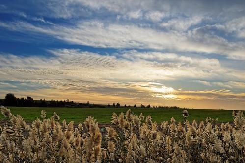 sunset green field clouds israel day cloudy sony explore hitech greenfields gnd minolta2485mm sonya77 gndreversefilter