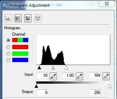 epson histogram adjusted by pixel blind