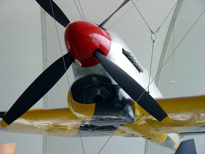 Hawker Tempest V 1
