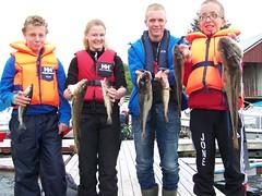 Fjordfiske fredag - Viken 4H 021