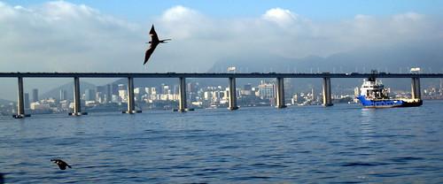 Bridge, Tugboats and Seagulls.