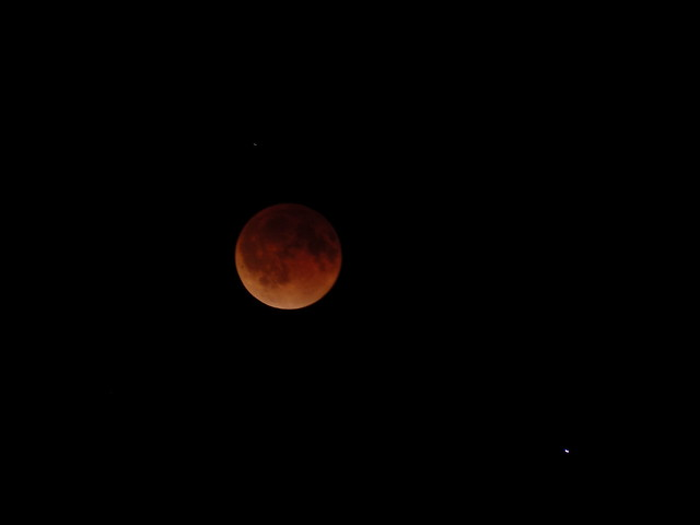 Blood Moon 115