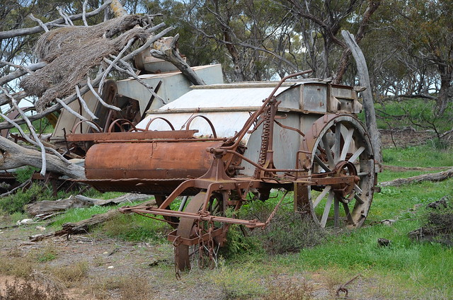 DSC_3041 abandoned horse-drawn Shearer stripper, Wagenknecht Road, Pallamana, South Australia