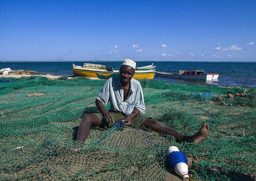 africa sea people color green water horizontal outdoors fisherman day sitting african indianocean sunny bluesky unesco copyspace unescoworldheritage oneperson mozambique worldheritage frontview moçambique mocambique fishingnet mozambico eastafrica mosambik blackskin lookingatcamera ilhademoçambique mozambic colourimage 1people モザンビーク portuguesecolony nampulaprovince islandofmozambique 莫桑比克 מוזמביק 모잠비크 moz505 莫三鼻給莫三鼻给
