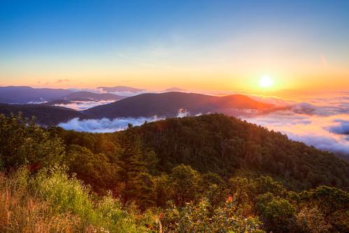 summer fog sunrise virginia washingtondc unitedstates luray shenandoahnationalpark