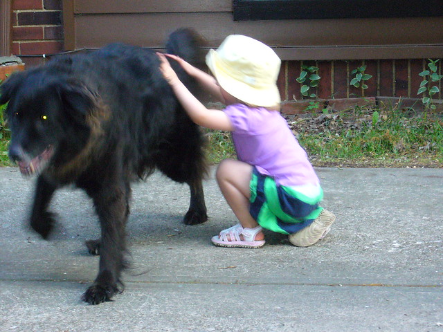 The girl loved her big furball