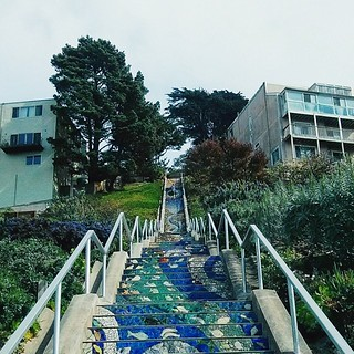 The city last week. The beautiful mosaic stairs leading to the Grandview Park, one of my favorite places! ☁ #sf #sanfrancisco #stairs #stairway #mosaic #grandviewpark #turtlehill #trees #plants #dunes #garden #sky #buildings #architecture #light #shadow # | by a25i