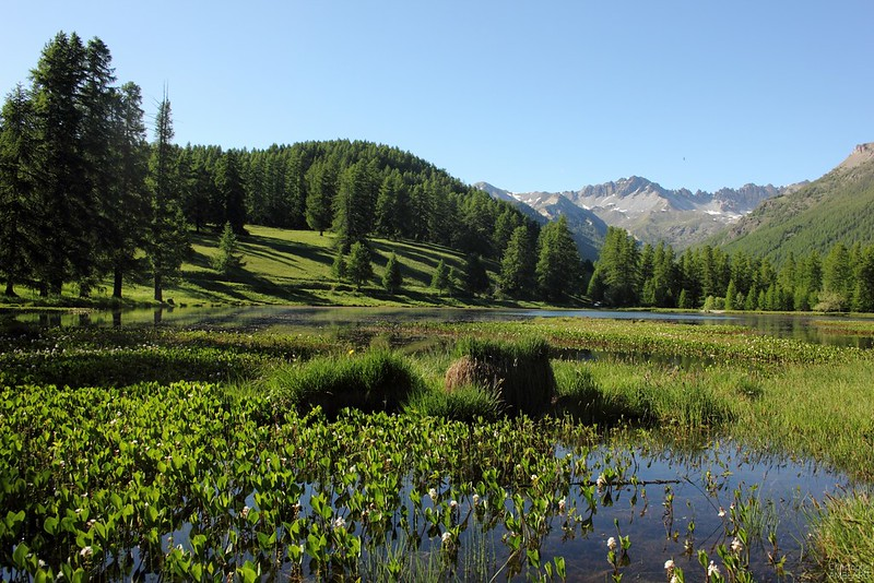Lac de Roue