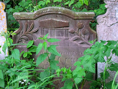 coffin on a tombchest with fern and tulip