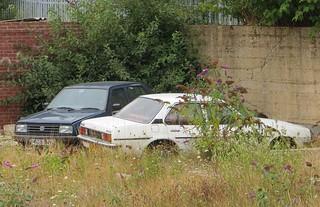 1979 Vauxhall Cavalier 1600GL + Jetta | by Spottedlaurel
