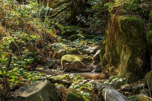park county lake marie skyline creek bay sonoma hills ridge trail area napa wilderness chaparral