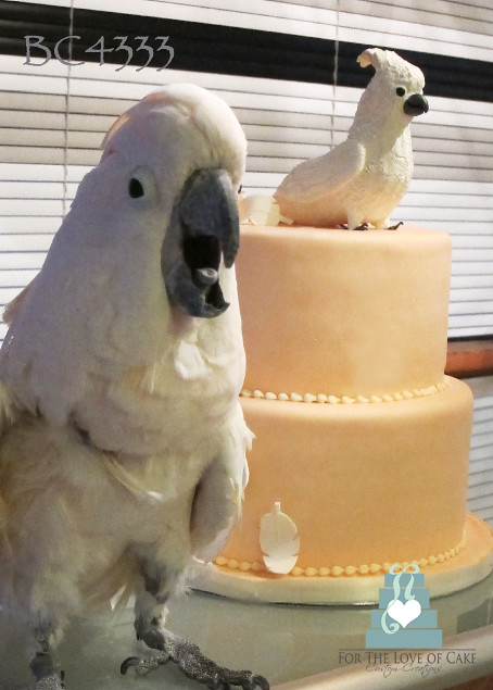 BC4333-cockatoo-bird-birthday-cake-toronto