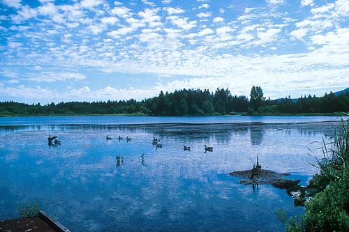 Diver Lake, Lantzville, Vancouver Island, British Columbia, Canada