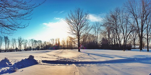 2014 blue sunrise sun rise tree rural autostitch iphoneedit jamiesmed dslr app snow snapseed sky handyphoto skies trees geotagged geotag light facebook weather ohio vsco midwest canon eos 500d t1i rebel vscocam february panorama pano winter clintoncounty fauxvintage smalltown usa country park kentucky
