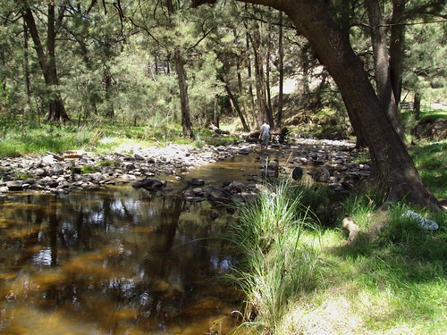 Ophir Creek where the first gold was discovered in NSW in 1851. It is near Orange. | by denisbin