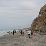 Beach of Torrey Pines State Natural Reserve