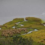 Mi, 08.07.15 - 12:40 - Nationalpark Cajas
