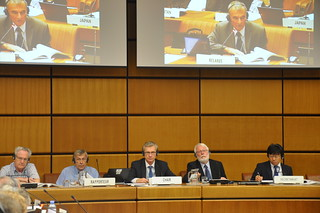 The 60th session of United Nations Scientific Committee on the Effects of Atomic Radiation in Vienna on 27 - 31 May 2013