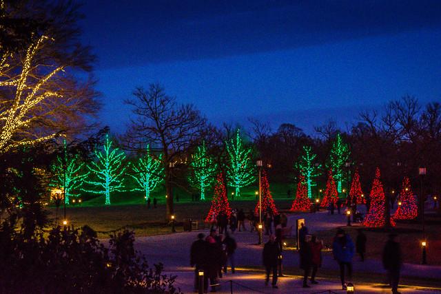 An evening at Longwood Gardens