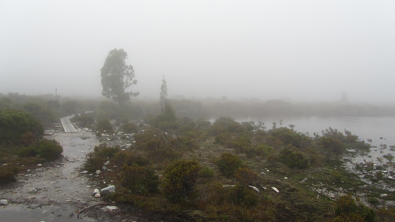 Day 3: A murky Pine Forest Moor crossing