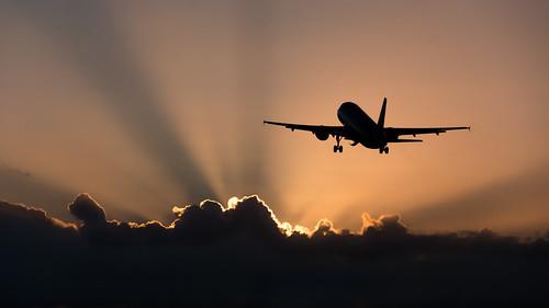 light sunset cactus sky orange sun silhouette clouds plane airplane us nikon aircraft aviation airline airbus rays sunrays stmaarten sxm airliner a320 lightrays usairways sintmaarten tncm d7100 kingdomofthenetherlands n112us bensenior nikond7100