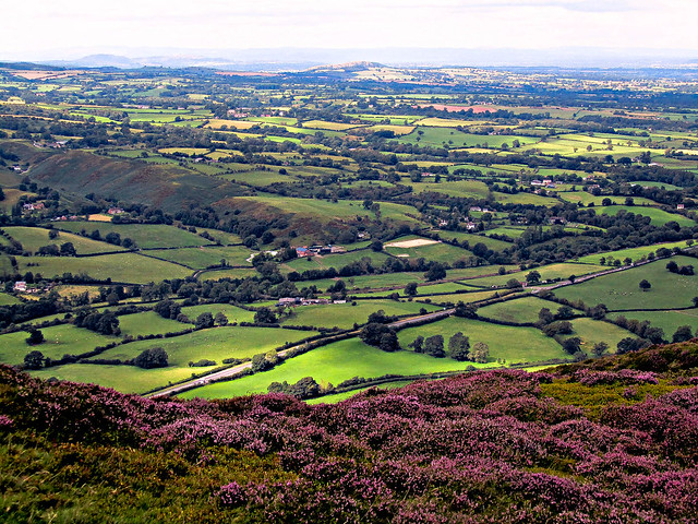 The view from Caradoc Hill