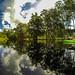 Paddling through Shingle Creek reflections 1