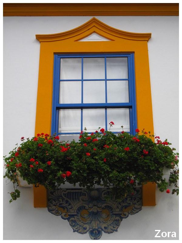 Fenêtre à aveiro