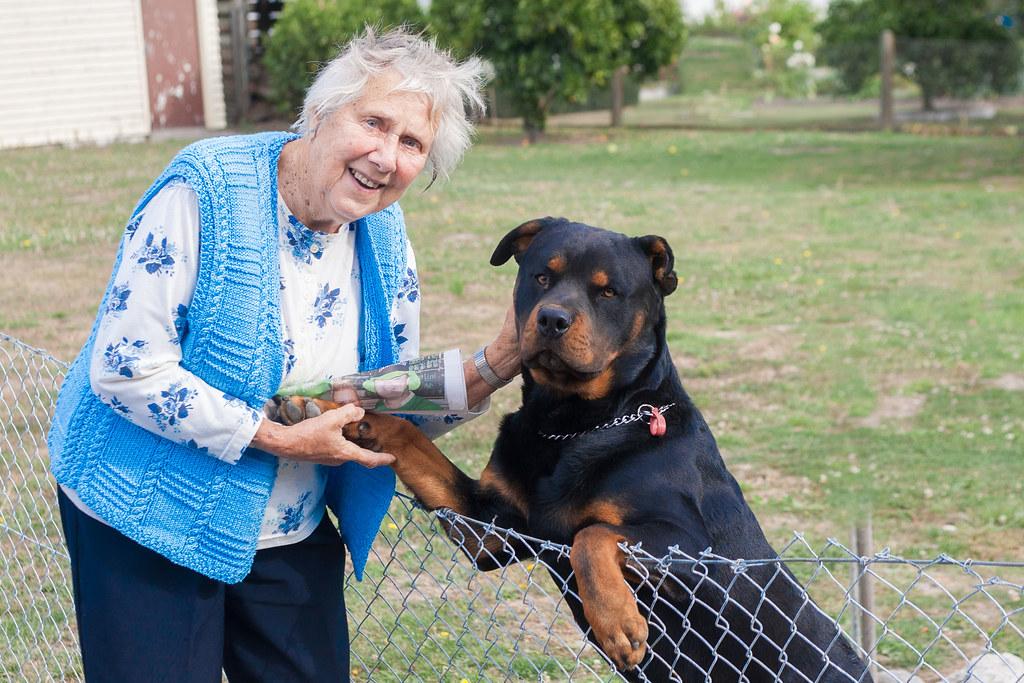 Výsledok vyhľadávania obrázkov pre dopyt grandma with dog