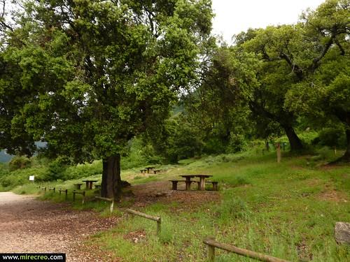 www.mirecreo.com Ruta del Nacedero del Urederra, Baquedano, Navarra | by mirecreo.com