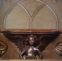 angel misericord