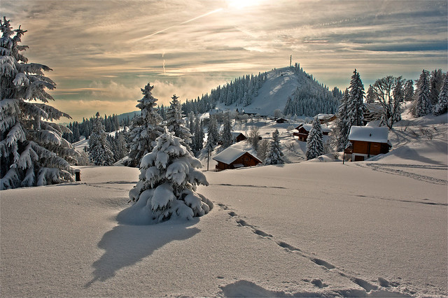 Winter  in Switzerland. No. 3180.