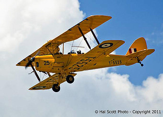 Tiger Moth (2)