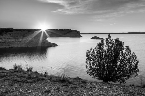 morning trees summer sky plants monochrome clouds sunrise reflections blackwhite flora colorado unitedstates pueblo lakes reservoir sunburst waterscapes lakepueblostatepark pinontree lakepueblo