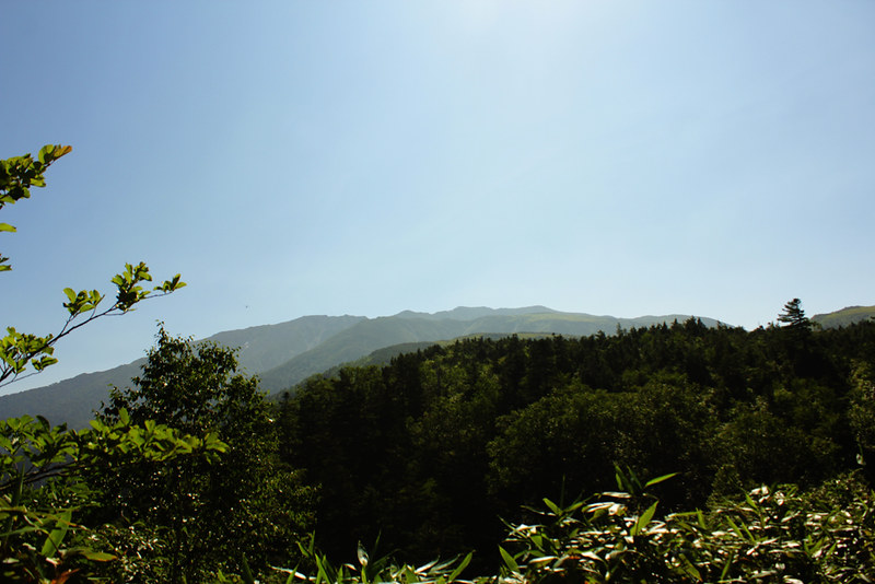 雲ノ平_22