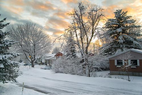 winter snow hiver neige canon 5dmarkiii color landscape
