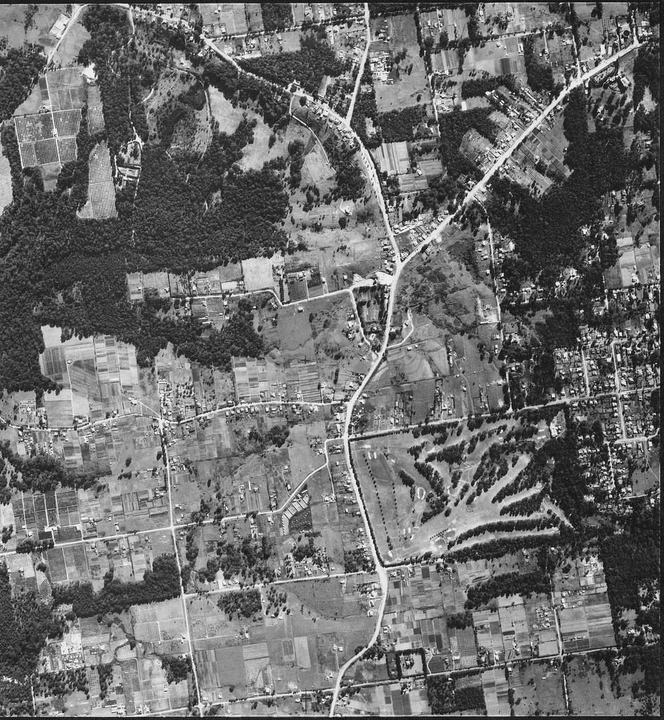 Pennant Hills, Beecroft & Carlingford 1953 - Sydney airphoto