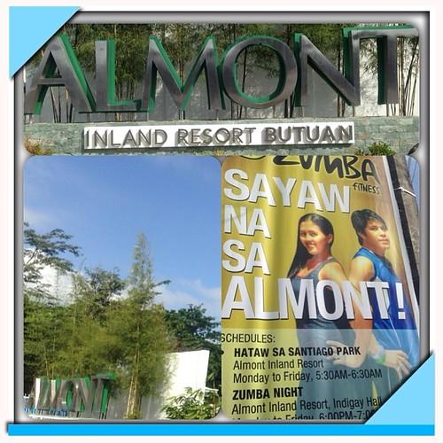 Almont sales tax calculator