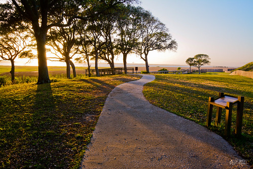 trees sunset sun sunlight history nature landscape nikon unitedstates northcarolina trail wilmington fortfisher d7100