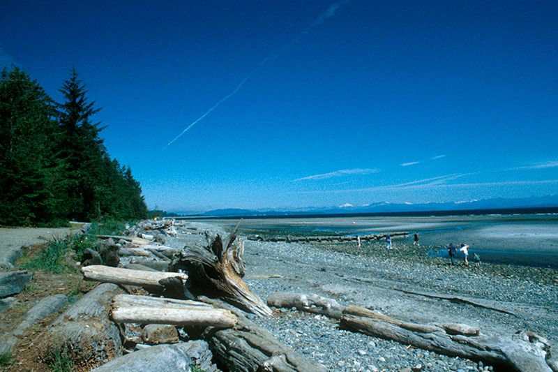 Miracle Beach Provincial Park, Saratoga Beach, Vancouver Island, British Columbia, Canada