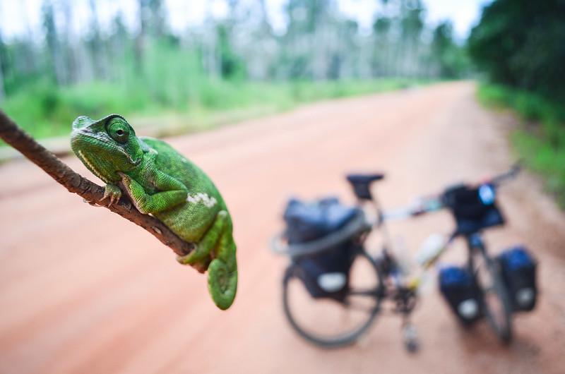 Day480-Bike-140226
