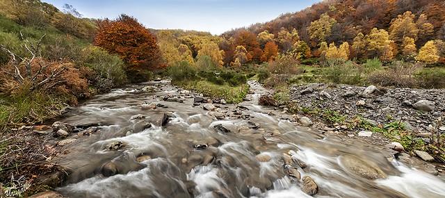 Colores del otoño (Panoramica de 8 fotos en vertical)