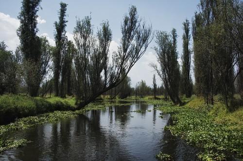 nature landscape mexico xochimilco d800