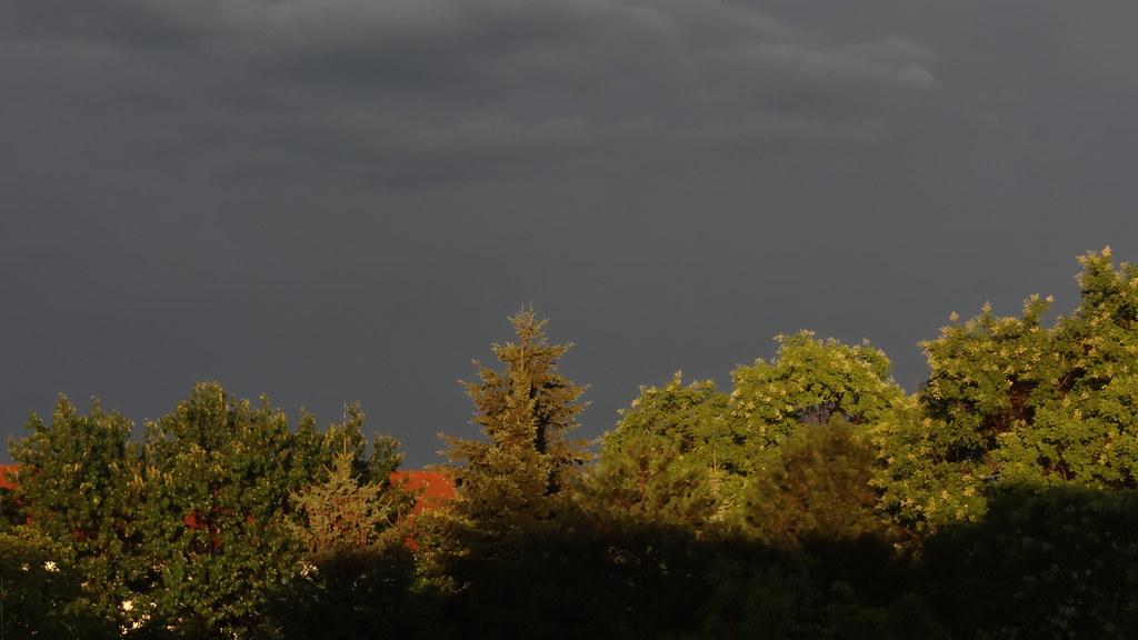 Nachdem Landgraf Ludwig IX. die Parforce-Jagd abgeschafft hatte, verloren die Jagdschlösser an Bedeutung und verfielen, so auch Schloss Wolfsgarten. In den dreißiger Jahren des 19. Jahrhunderts renovierte Erbprinz Ludwig III. Der Gang durch die Parkanlage bei Sonnenuntergang am Abend ist schon für sich ein Erlebnis 0186